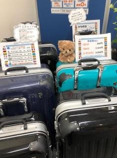 北海道・札幌でスーツケースを借りるなら、安心安値のクラポ!!