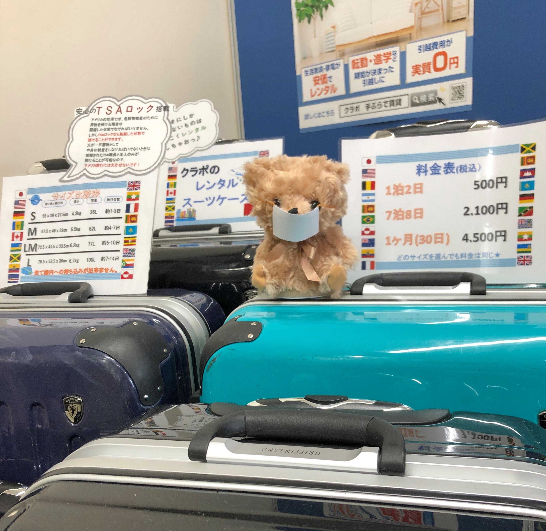 スーツケース化マスク熊